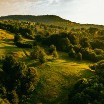 Transylvania Calling 2019