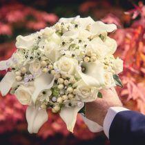 esküvői fotó fotózás szeged sadaweb
